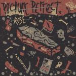 Picture Perfect - Rose